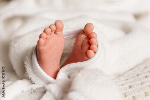 Foto  Bare feet of a cute newborn baby in warm white blanket