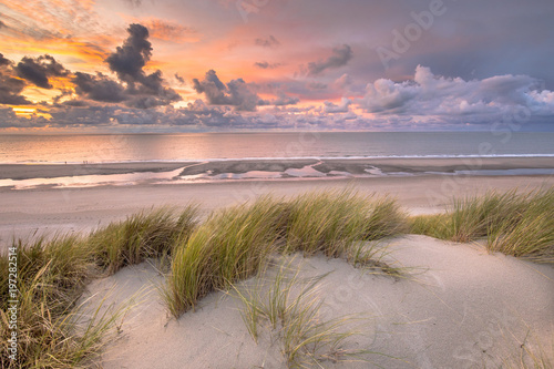 Wall Murals Northern Europe View from dune top over North Sea