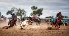 Calf Roping At A Country Rodeo