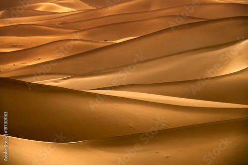 Photo sur Toile Desert de sable Background with sandy dunes in desert