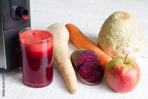 Glass of organic juice with raw fruit and vegetables and juicer Canvas Print