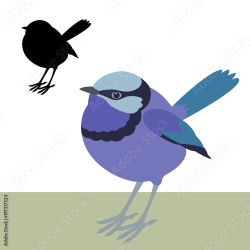 Cuadros en Lienzo fairy wren bird vector illustration flat style black silhouette