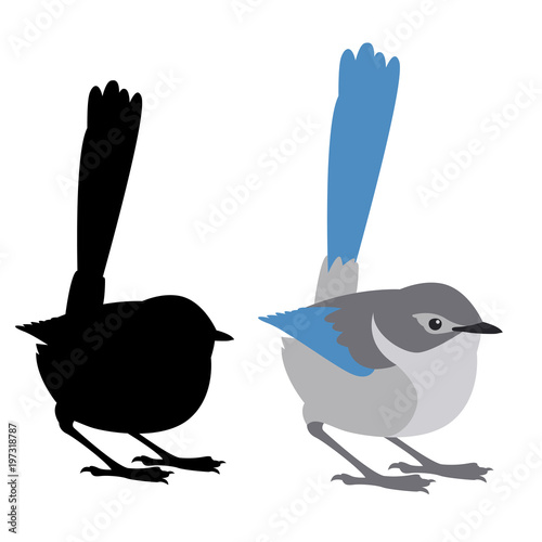 Fotografie, Obraz  fairy wren bird vector illustration flat style black silhouette