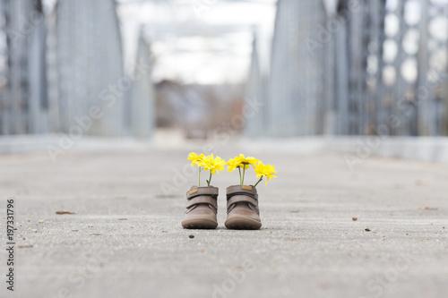 Zapatos con flores sobre el puente de Hierro