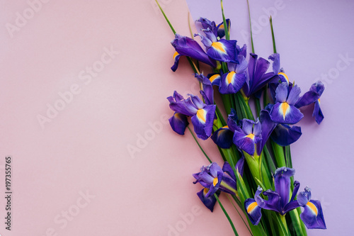 Violet flower bouquet