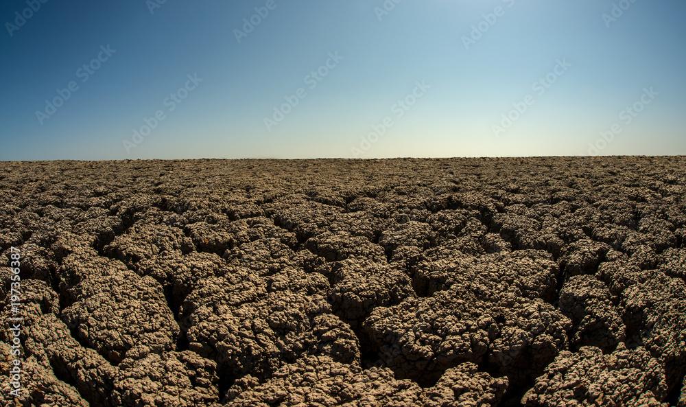 severe drought desert