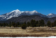Snow Capped San Francisco Peaks