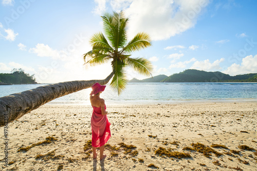 Fototapeta female tourist with pink sarong under coconut palm tree, seychelles