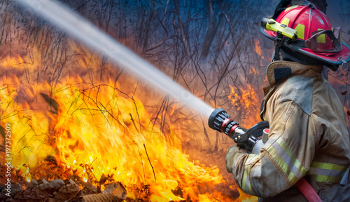Natural disaster ,firefighters spray water to wildfire. Wallpaper Mural