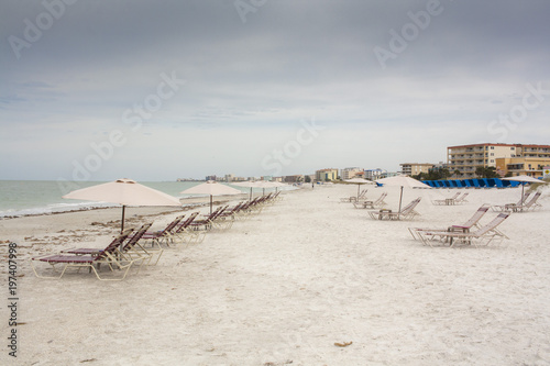 Beach Chairs And Umbrellas On A Florida With High Rise Iniums In The Distance