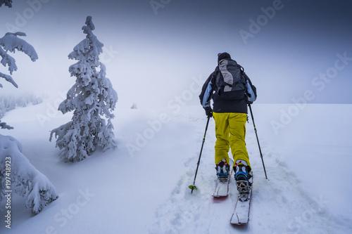 Snowboarder mit Splitboard auf der Tour in den Alpen