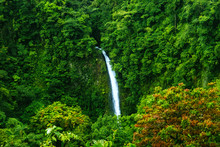 Waterfall Of La Fortuna In The Arenal Volcano National Park, Costa Rica