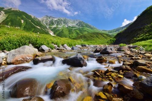Leinwand Poster Tateyama alpine  ~  summer