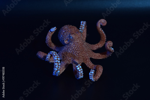Child's toy octopus with colored gels. Poster