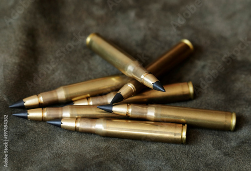 Lutz Moeller  30-06 hunting cartridges with MJG lead free bullets