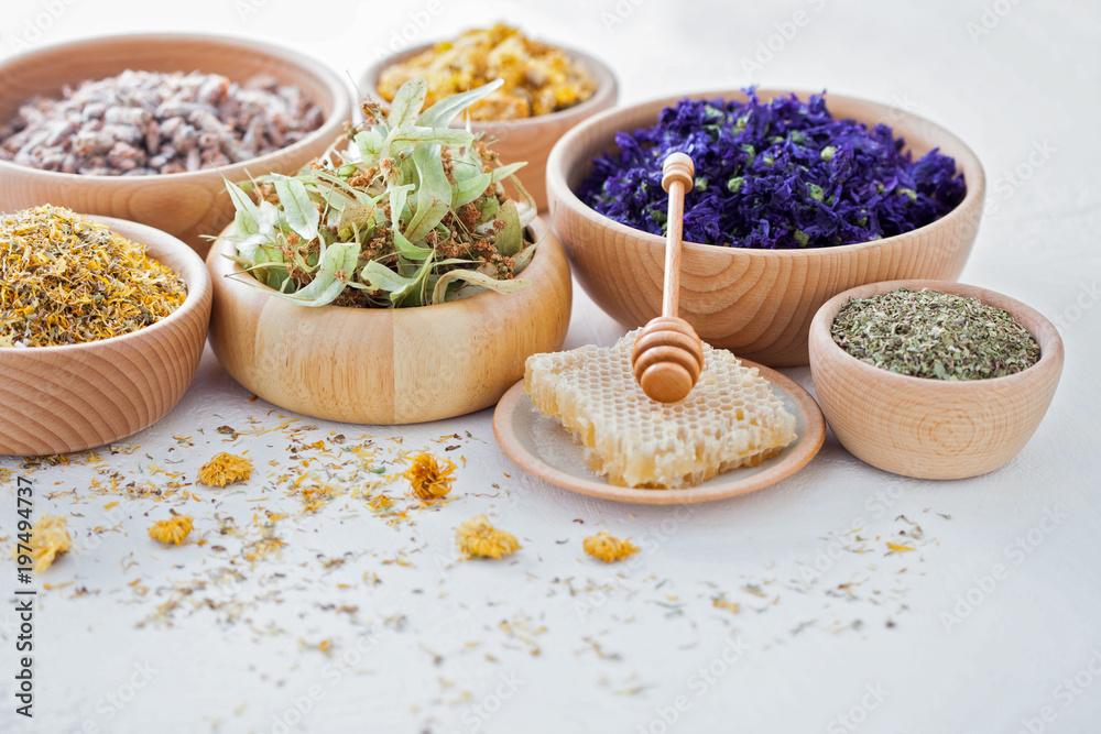 Fototapety, obrazy: herbalism