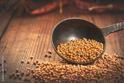 Valokuva mustard seeds