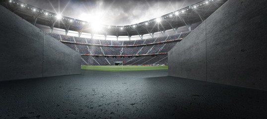 Fototapeta The stadium