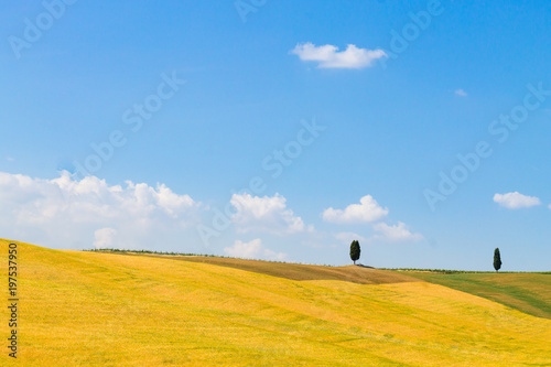Foto op Canvas Oranje Tuscany hills landscape, Italy