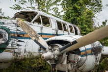 Airplane Wreckage In Jungle - ...