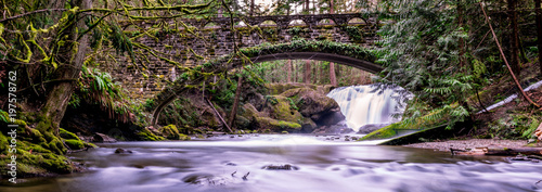 Canvas Prints Forest river Whatcom Falls, Bellingham, Washington, USA.