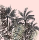Piękna tropikalna wektorowa ilustracja z palmowymi roślinami - 197628949