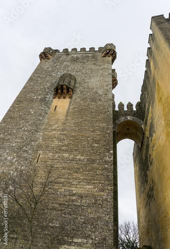 castillo de piedra medieval con torres sobre colina verde con arboles Poster
