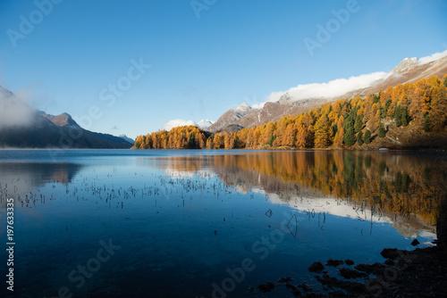 jesien-las-przy-jeziorem