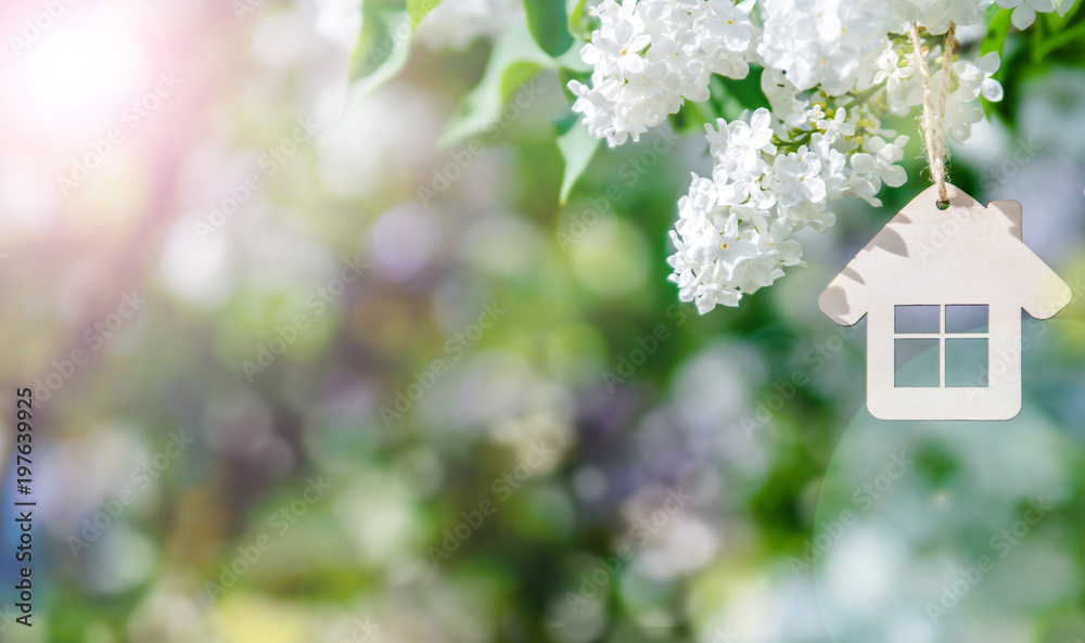 Fototapety, obrazy: The symbol of the house among the branches of the white lilac