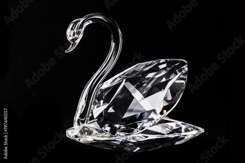 Photo sur Toile Cygne closeup view of an isolated crystal swan