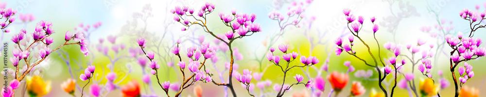 Fototapeta Panoramik Çiçek Manzarası