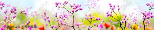 Crédence de cuisine en verre imprimé Fleur Panoramik Çiçek Manzarası