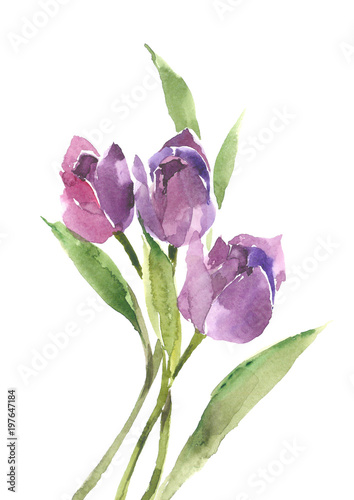 bukiet-purpurowych-tulipanow-wiosenne-kwiaty-kwiatowy-nastroj
