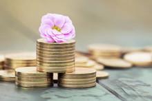 Money Savings In Spring - Gold...