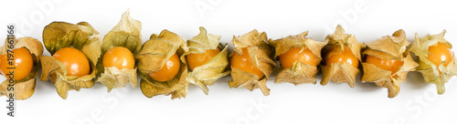 Photo  Physalis, fruits with papery husk