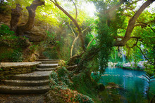 Wonderful Magic Waterfall Myst...