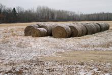 Bails Of Hay Winter Storage Wi...