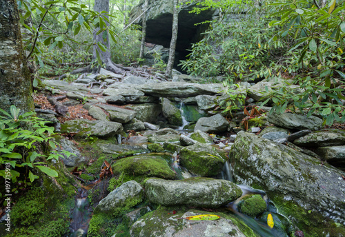 Photo Cascading Stream In The Smoky Mountains