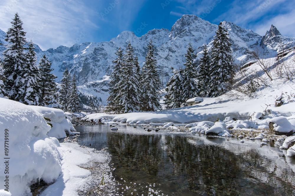 Fototapety, obrazy: Zimowy krajobraz