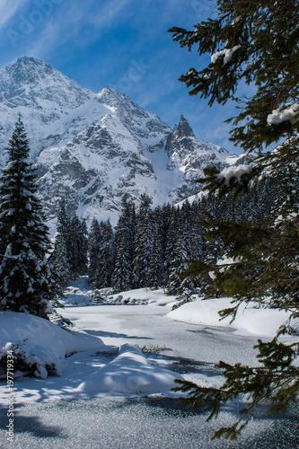 Foto op Plexiglas Zimowy krajobraz