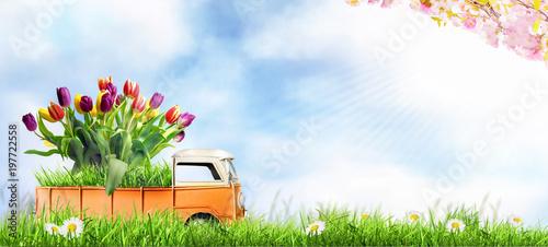 Fotomural Kleines Auto bringt den Frühling.