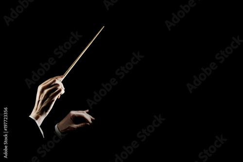 Orchestra conductor music conducting. Hands of conductor with baton