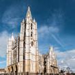 Catedral de León. Panorámica.