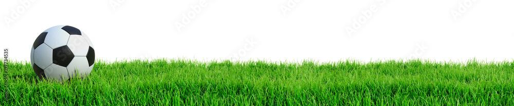 Fototapety, obrazy: Fußball auf Rasen Panorama isoliert weißer Hintergrund 3D Rendering