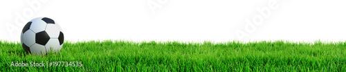 Obraz Fußball auf Rasen Panorama isoliert weißer Hintergrund 3D Rendering - fototapety do salonu