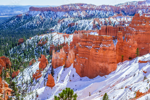 Tuinposter Canyon Red-yellow rocks in Bryce Canyon. Panorama of the mountain massif. A tourist place, a stone forest.