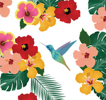 Hummingbird Floral Background