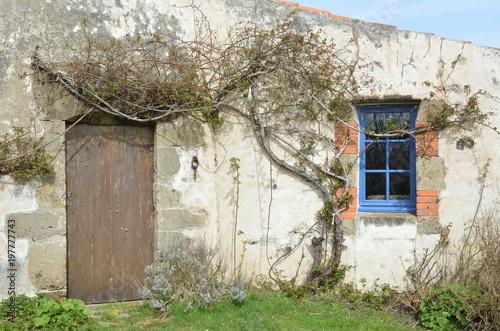 Papiers peints Moulins Rairé en Vendée, détail. Créé vers 1560, seul moulin à vent de France ayant toujours fonctionné