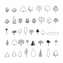 Top View And Side View, Set Of Graphics Trees Elements Outline Symbol For Architecture And Landscape Design Drawing. Vector Illustration