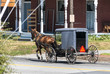Amish Horse and Buggy on a Sunny Summer Day 2